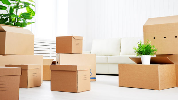 Relocation and Move Management Services